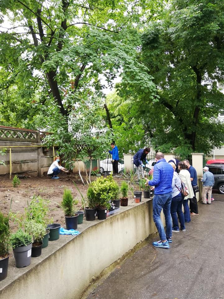 Atelier de plantat într-un Club de seniori